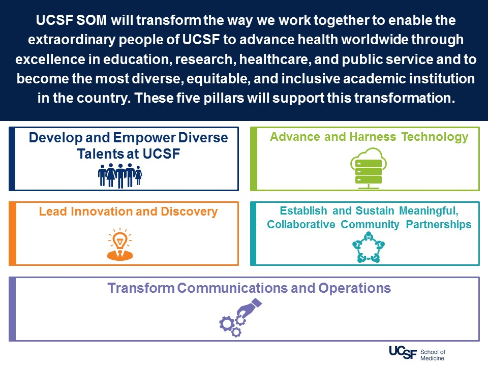 SOM Strategic Plan Pillars